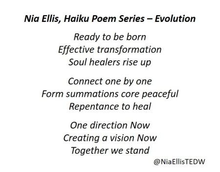 niaellisEvolution